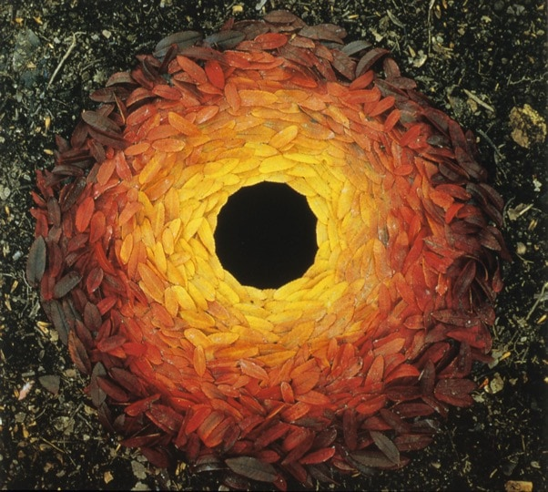 Rowan Leaves, Andy Goldsworthy