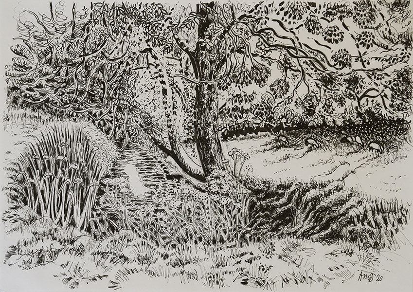 Pitcombe, 2020, pen, 21 x 29 cm by Alexandra Drysdale