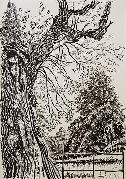 Pitcombe, 2020, pen, 29 x 21 cm by Alexandra Drysdale