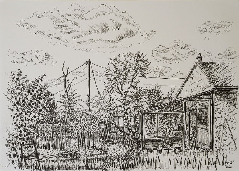 Tom Spratling's garden, pen, 21 x 29 cm by Alexandra Drysdale